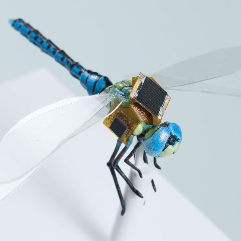 A first generation backpack guidance system that includes energy harvesting, navigation & optical stimulation on a to-scale model of a dragonfly